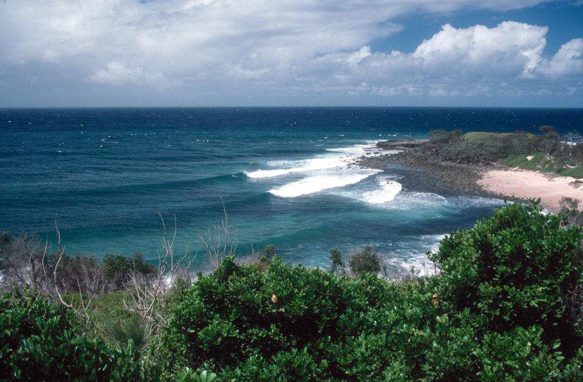 Image: Surfing
